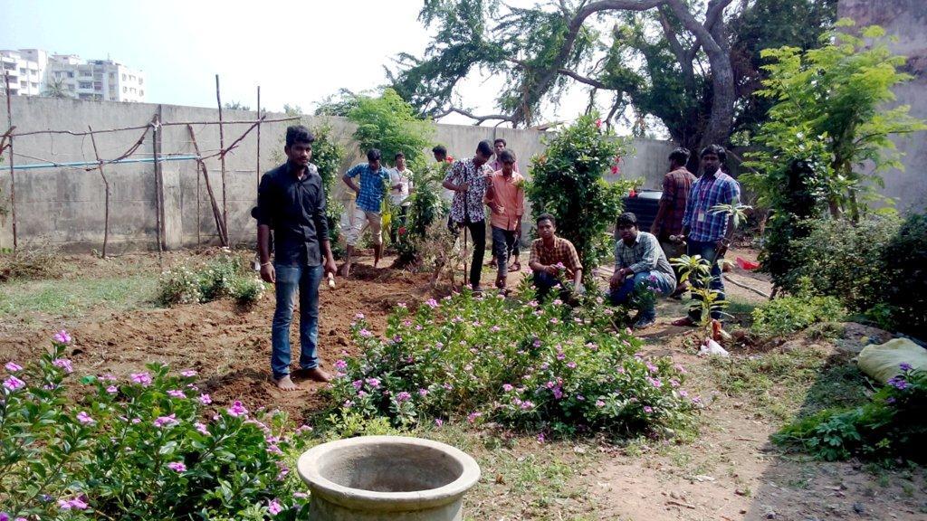 Organic Farming (2)