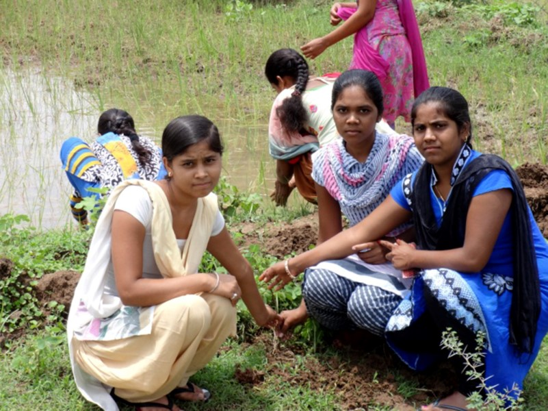 Movement towards GREEN India